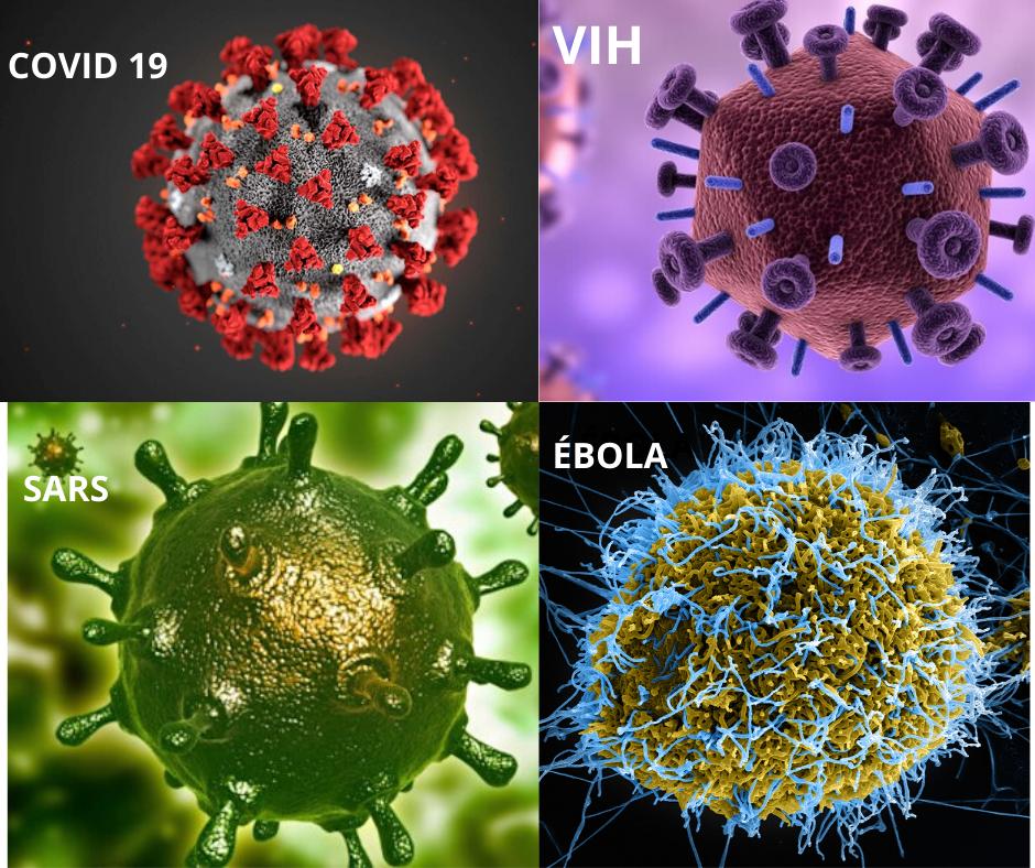 Lo que no te cuentan del Coronavirus.