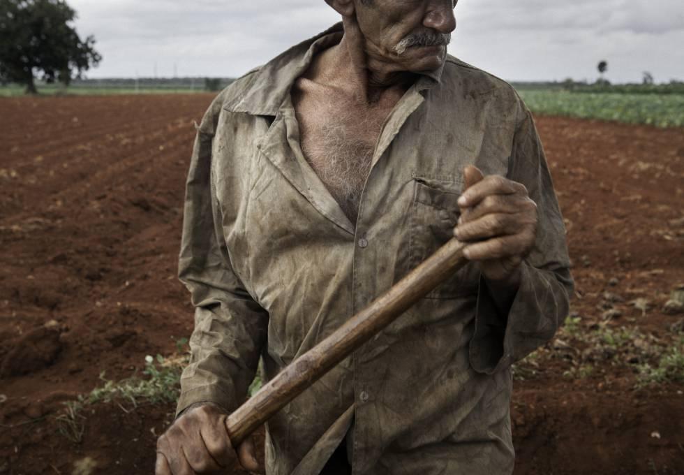 ¿Por qué el comunismo de Cuba no quiere acabar con el hambre?