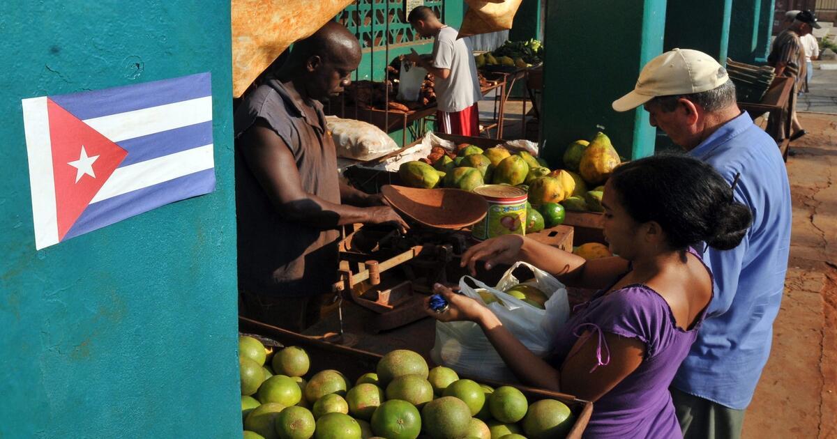Lee más sobre el artículo Empresas Privadas: La solución a la escasez en Cuba.